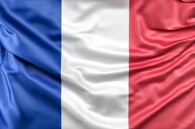 Francês Comercial