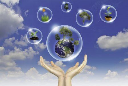 Como Elaborar Relatórios de Sustentabilidade