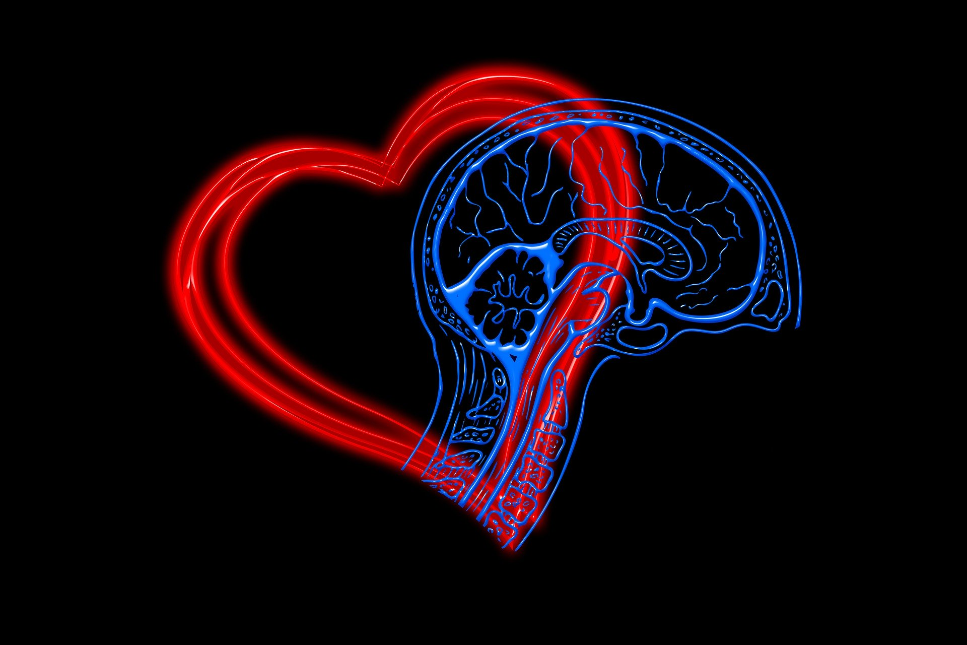 Inteligência Emocional –  elearning